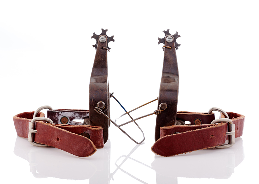 Lot454-Rodeo Spurs